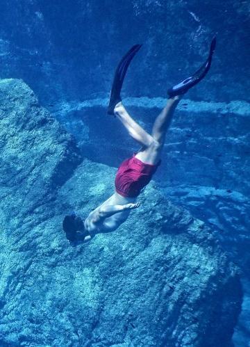 自由潜水的潜水爱好者图片