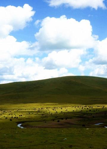 四川若尔盖草原风景图片